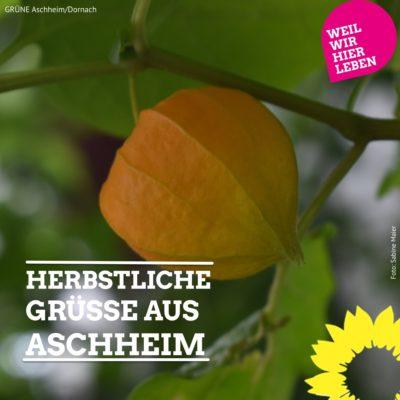 Herbstliche Grüße aus Aschheim